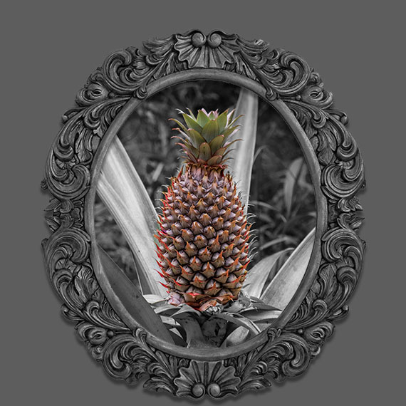 Pineapple photo with frame